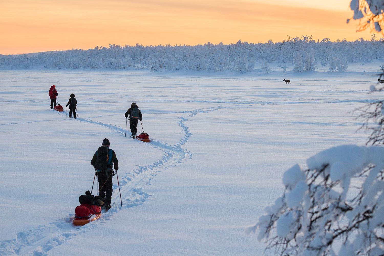 raid ski pulka et rennes