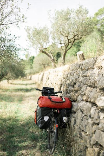 Pause sous les oliviers.