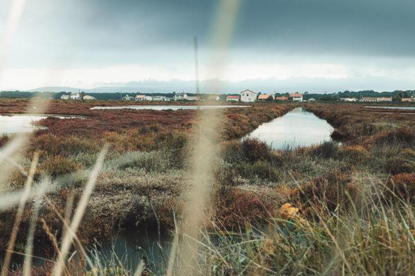 Temps orageux sur les étangs près de Frontignan