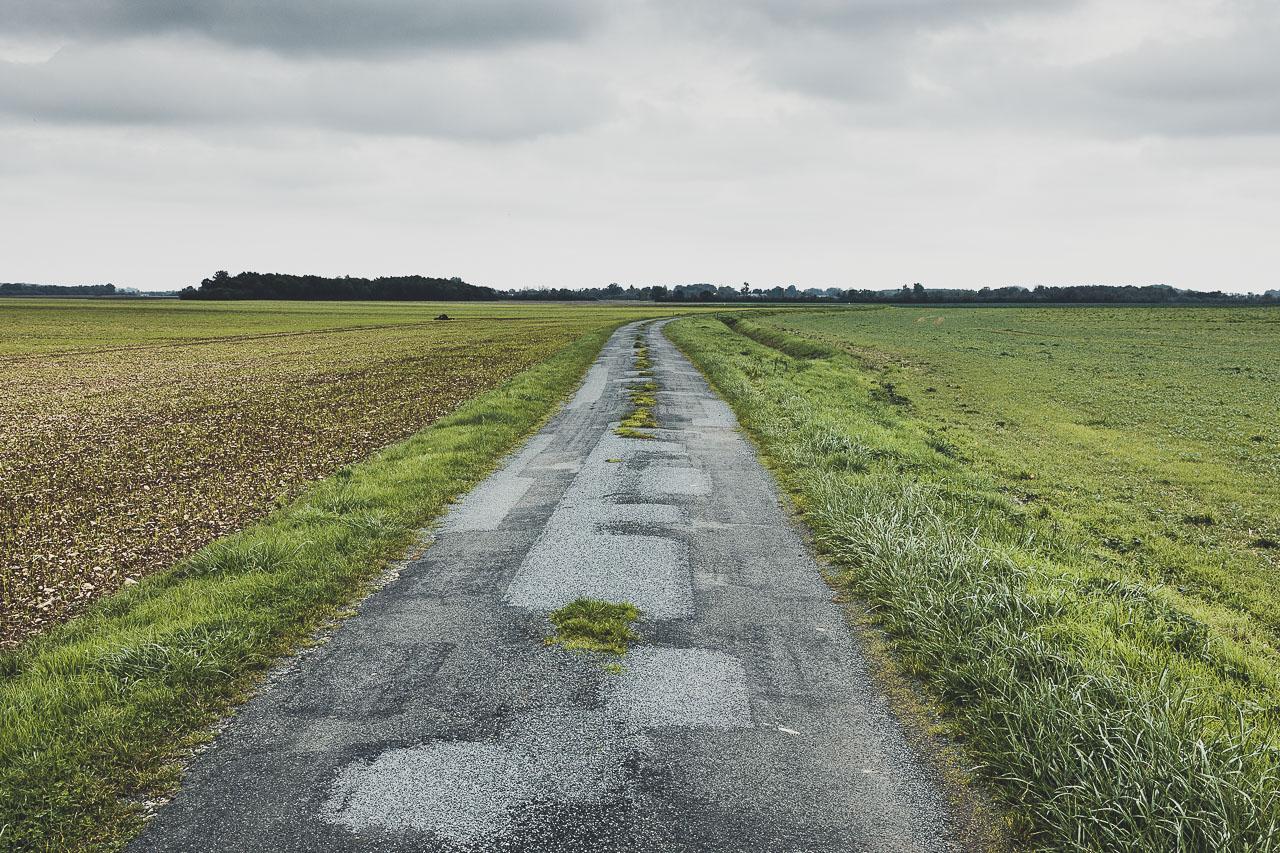 Route entre les champs